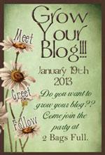 Grow Your Blog 2013