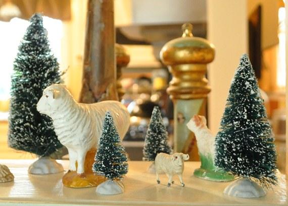 Bottle Brush Trees and Sheep