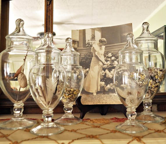 Nature in apothecary jars - Just Vintage Home