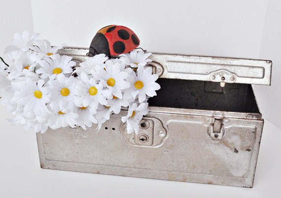 Daisy toolbox