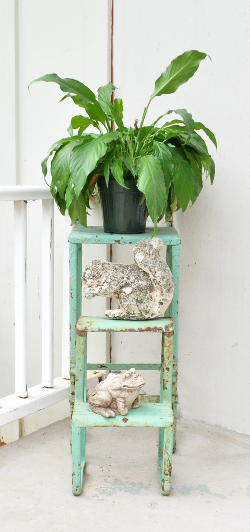 Vintage, aqua, step stool used as a plant stand with a concrete squirrel and a concrete, frog sprinkler as accents.