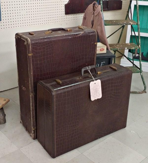 Alligator look suitcases
