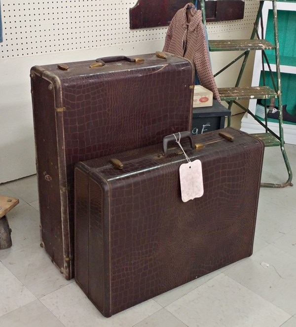 Alligator look suitcases